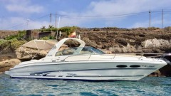 Speedboat Trip (3 Hours) [Group Offer]